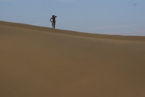 The dunes are soft, brown and steep
