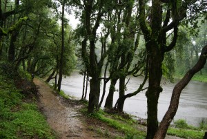 By the Nachiket Tal