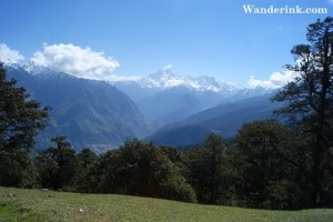 Starts from Auli meadows