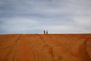 The Wahiba Sands - my folks have vertigo to bash dunes