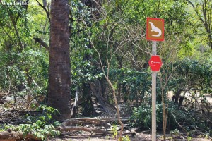 You are now officially on the Komodo trail